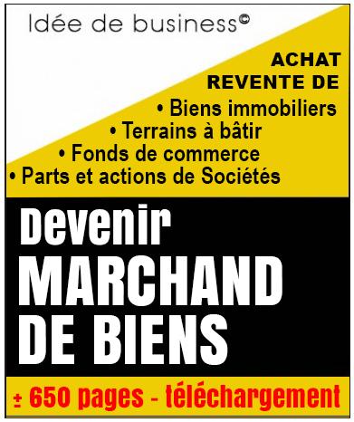 Id e de business rentable editions juridiques pratiques for Idee de commerce rentable